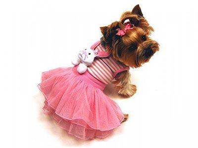 Платья для собак с доставкой спб