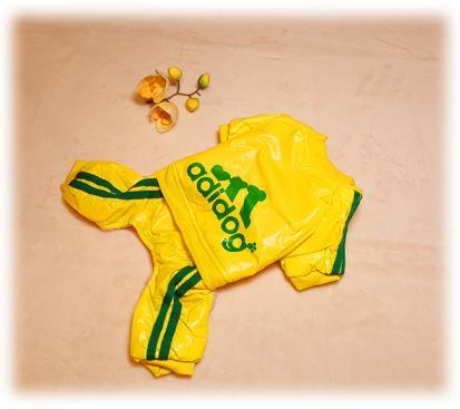 Комбинезон «Adidog» цвет жёлтый