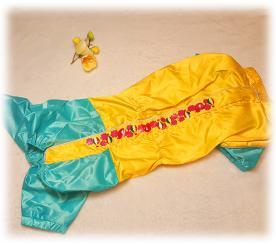 Дождевик для таксы цвет жёлтый