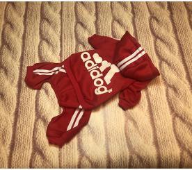 Спортивный костюм «Adidog» цвет красный
