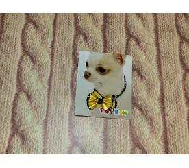 Бабочка «Модник» цвет жёлтый