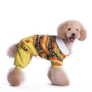 Теплая одежда для собак