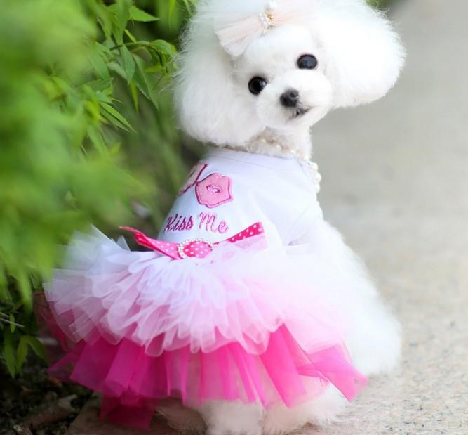 """Платья, сарафаны, костюмы для девочек в интернет-магазине товаров для собак """"Офелия"""""""
