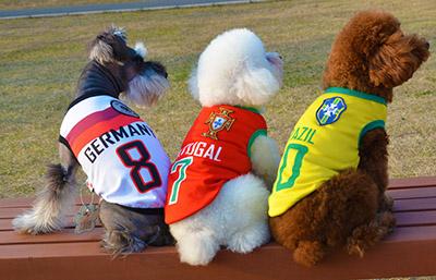 Спортивные футболки для собак