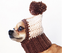 Купить головные уборы для собак СПб